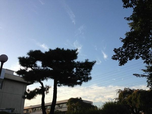 そろそろ秋か?☆かおり☆3