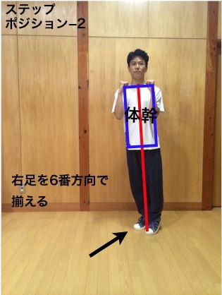 director_step_padobure4