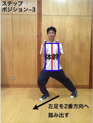 director_step_padobure5
