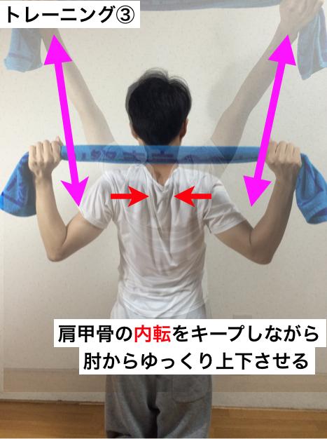 チア_アクロバット_トレーニング_肩甲骨7