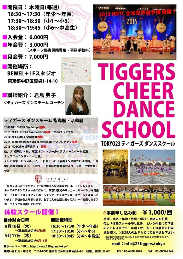 TIGGERS DANCE TEAM(ティガーズダンチーム)