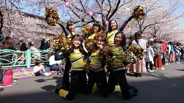 町田チアスクールフィオーレ3